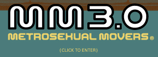 Metrosexual movers boston